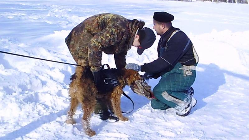 Горловка . тренинг в сугробах на старый новый год .Сильвана (на резине ) 13,01,19(2)