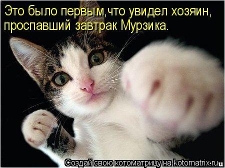 http://cs406129.userapi.com/v406129391/35e0/89k9qdkwiCI.jpg