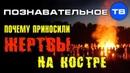 Зачем древние приносили жертвы на кострах Познавательное ТВ, Артём Войтенков