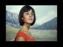 Кавказская пленница - Можно Вас попросить идти по шоссе