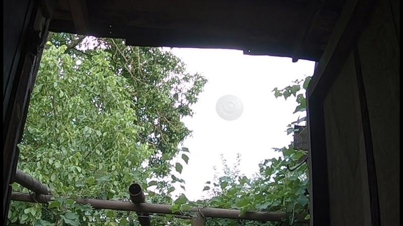 Пока сидели на даче, рядом в небе кружили нло. Белорус снял на видео что-то странное?