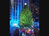 С Новым годом поздравляю всех_heart_eyes_cat__see_no_evil_ Давайте зажжем елку вместе_ Ставьте в коммента ( 800 X 640 ).mp4