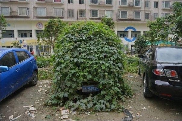 Этот автомобиль простоял несколько лет в провинции Сычуань, Китай. Он полностью...