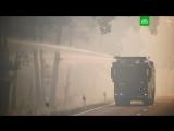 Крупный лесной пожар под Берлином