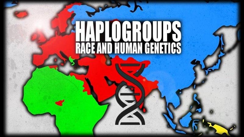 What are Haplogroups? Human Genetics Explained