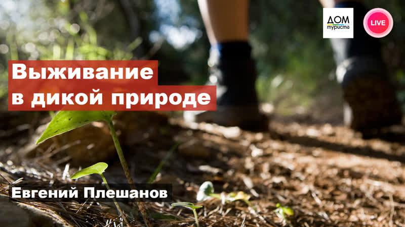 «Выживание человека в природных условиях на подножном корме» Дом Туриста | Воронеж