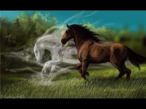 Animation of the pony eye .