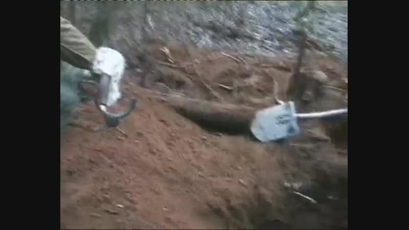 Наши раскопки в деревне Слаутино(2014)