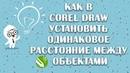 Как в corel draw установить одинаковое расстояние между объектами