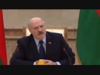 """Лукашенко Пашиняну: """"Что ты язык засунул в одно место, Путина боишься"""