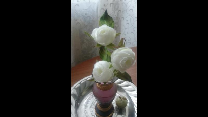 Веточка розы