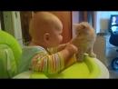 Егор ругает котенка за то что котенок кусается