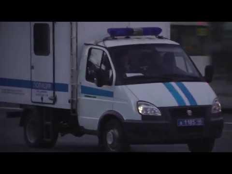 «ФОНАРИ»: Курская власть в ночном городе
