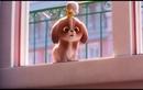 Видео к мультфильму «Тайная жизнь домашних животных2» 2019 Персонажный трейлер «Daisy»