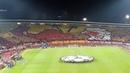 Champions League Crvena zvezda PSG Koreo
