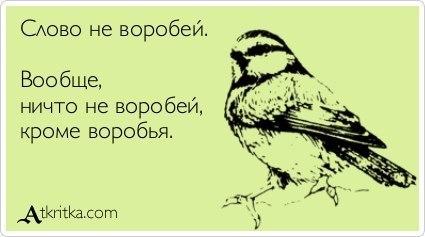 http://cs316422.userapi.com/v316422569/288a/G2mVvcVIrPg.jpg