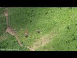 В Кавказском заповеднике олениха гналась за волком, напавшим на ее детенышей