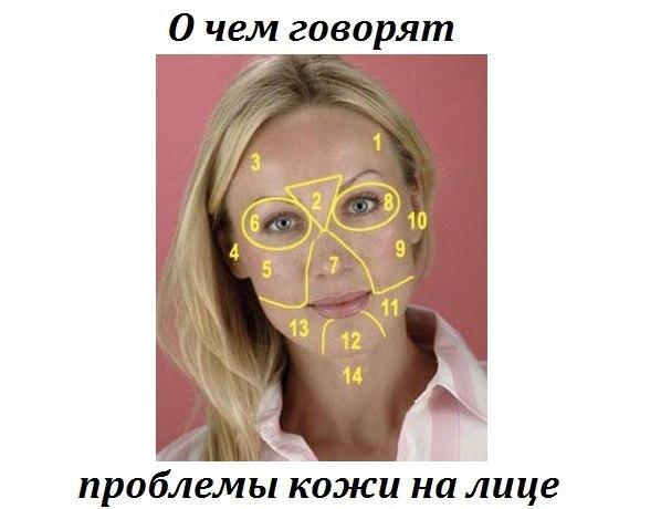 Перед вами карта лица, которая разбита на зоны. Неприятные проявления на коже в виде прыщей, сосудистых звездочек и даже преждевременных морщин часто связаны с проблемами жизненно-важных органов отвечающих за эту область лица..
