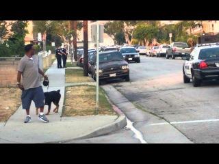 Полицейские арестовали человека за видеосъемку и застрелили его собаку