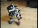 Sony Aibo Recognition software