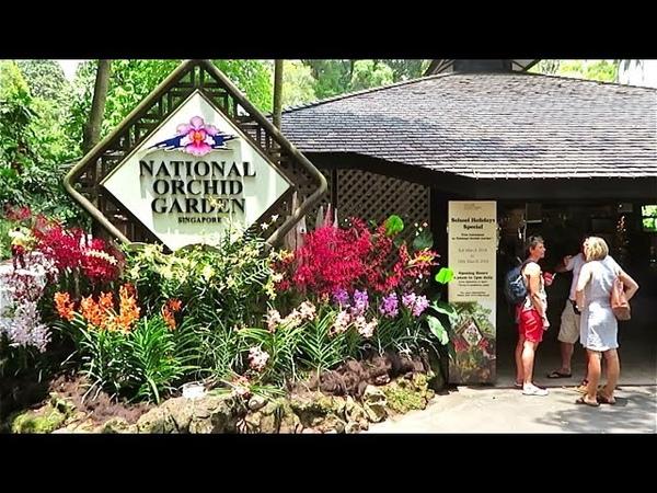 Жемчужина Сингапура Национальный Сад Орхидей