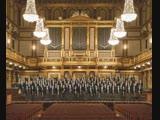 Wiener Philharmoniker - Concert in Versailles (Versailles, 11.11.2018)
