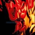 Ulrich Schnauss - Gone Forever (Robin Guthrie Remix)