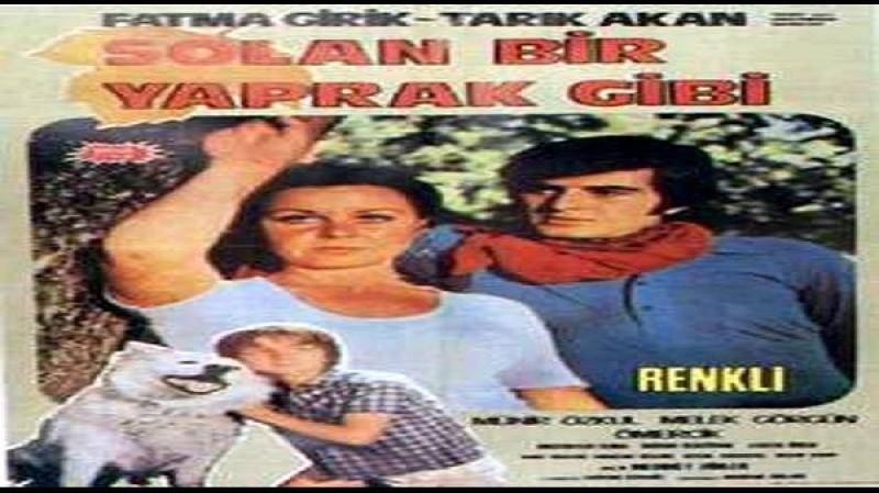 Solan Bir Yaprak Gibi -Mehmet Dinler 1971 Tarik Akan, Mehmet Büyükgüngör, Fatma Girik