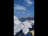Волонтёр из Риги Виктор приглашает покататься на яхте ангелов-подорожников😊