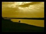 Hindi Music Video. 'Bangles' by Niraj Chag