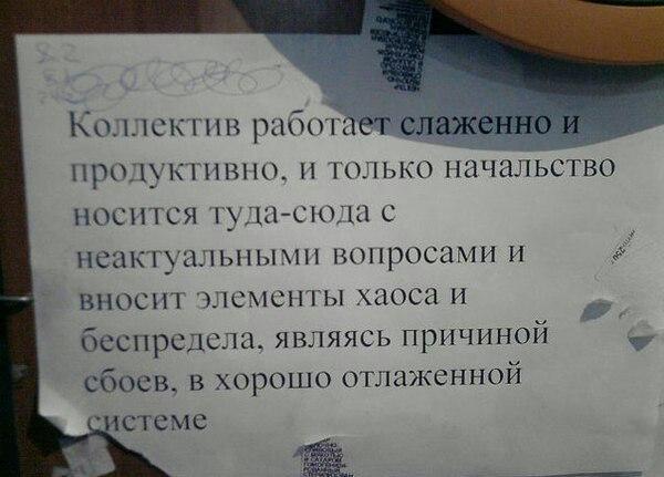 Фото №432949789 со страницы Надежды Гордиенко