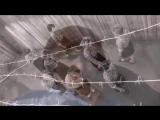 Стена - группа Малолетка