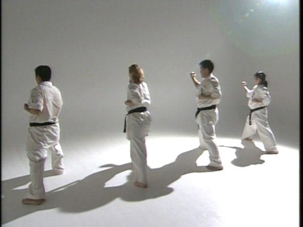 Перемещение в стойках с ударами, блоками- Ido geiko