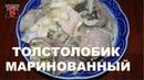 Блюда из рыбы Толстолобик маринованный Самый вкусный рецепт