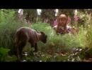 Таинственный сад . The Secret Garden. 1993