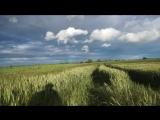 по полю около Рыженино под стихи Есенина 2017-07-05 19.34.09