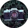 Katerina Richey photography
