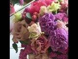 Аквариум в самом хитовом цвете этого сезона - коралл