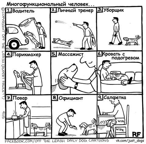 Электронные ошейники, АНТИЛАЙ