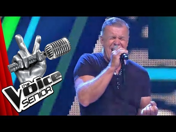 Die Ärzte - Junge (Steffen Martin) | The Voice Senior | Audition | SAT.1 TV