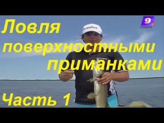 Ловля поверхностными приманками-поппер Skinny Pop,уокер Gunfish Алексей Шанин видео