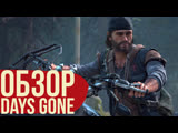 Почему Days Gone не The Last of Us.