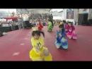 Team Syachihoko - Odaiba Gasshuukoku Mezamashi Live 20130714
