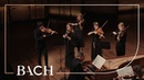 Bach - Air from Orchestral Suite No. 3 in D major BWV 1068   Netherlands Bach Society