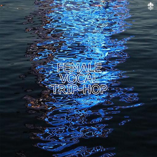 Half Dub Theory альбом Female Vocal Trip-Hop