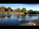 Нырнул в тренировочный пруд для гребцов. Таллин