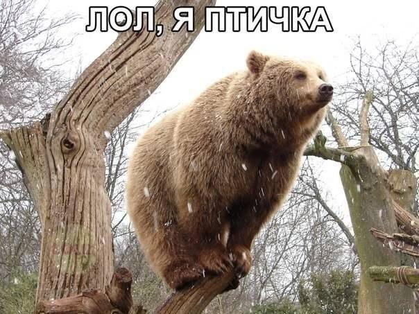 """Представителей СМИ не пустили на съезд """"регионалов"""" - Цензор.НЕТ 2981"""