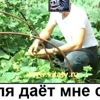 Емиль Берговин