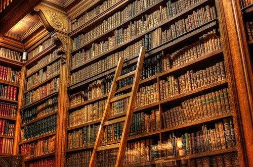 Библиотека — это гербарий чувств и страстей, сосуд, где хранятся засушенные образцы всех цивилизаций