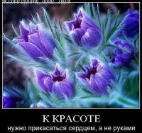 Виталий Ерошов, 20 марта 1953, Саратов, id180843882